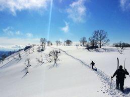 Ski à Niseko, Hokkaido