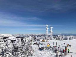 Ski à Shiga Kogen, Nagano