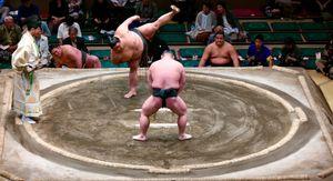 Match de sumo